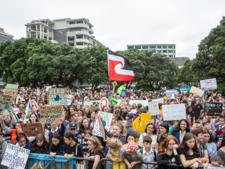 Wellington Climate Strike by David Tong