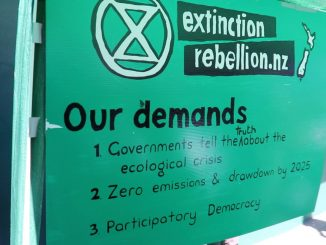 Extinction rebellion demands